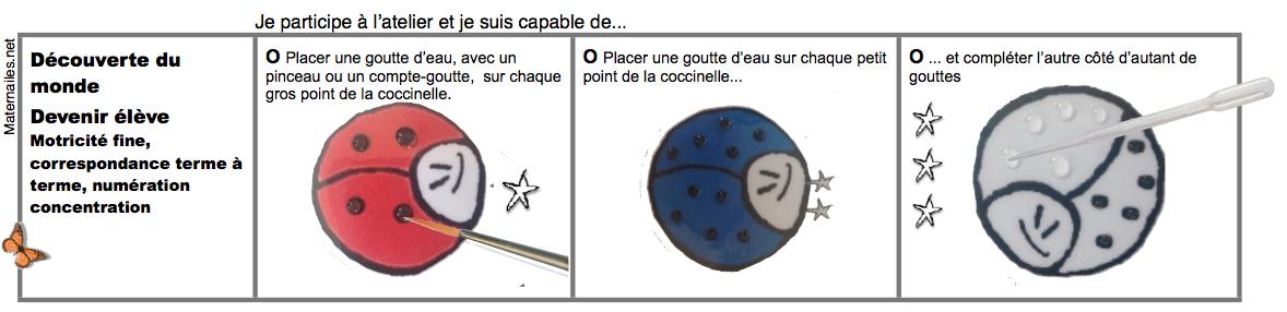 Coccigouttes